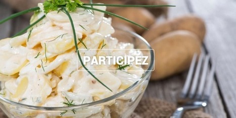 Comment rebondir sur le fameux Kickstarter Potatosalad ? | Economie Collaborative | Scoop.it