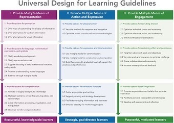 Universal Design for Learning (UDL) Principles and Expert Learners | Universal Design for Learning and Curriculum | Scoop.it