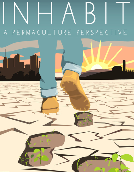 Groundbreaking Permaculture Film Offers Bold New Solution in Regenerative Agriculture » EcoWatch | Zero Footprint | Scoop.it