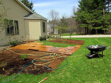 Sheet Mulching: How to Smother Weeds, Build Soil & Conserve Water the Easy Way - Modern Farmer | Permaculture, Horticulture, Homesteading, Bio-Remediation, & Green Tech | Scoop.it