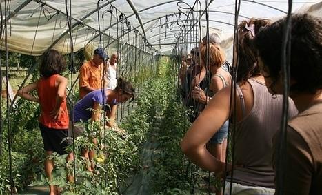 La Maison des Semences Paysannes :  la biodiversité ça se cultive aussi !   Agriculture en Dordogne   Scoop.it