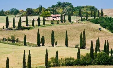 The sound of the summer: classical music festivals to enjoy this year | Montalcino.English | Scoop.it