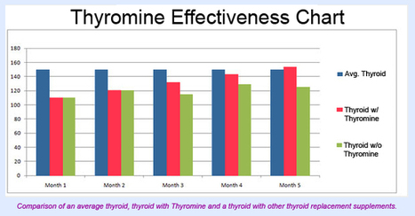 Thyromine Reviews - Metabolic Diet That Works | Thyroid Diet Guide | Scoop.it