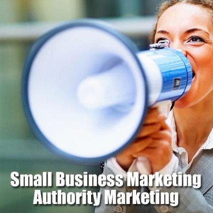 Small Business Marketing – Authority Marketing   Small business marketing   Scoop.it