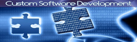 Enhance Your Business Productivity by Using Custom Software Development | IT | Scoop.it