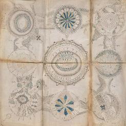 The Unread: The Mystery of the Voynich Manuscript | Ed-tech, Padagogy, and Classics Stuff | Scoop.it