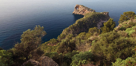Cycling in Majorca and Menorca | Travel Zoo | Scoop.it