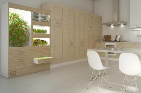 Pour vous faire manger local, ils installent une ferme dans votre cuisine   Des 4 coins du monde   Scoop.it