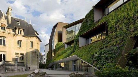 Canicule : bientôt des végétaux sur nos murs pour rafraîchir nos villes ?   Toiture terrasse végétalisée   Scoop.it