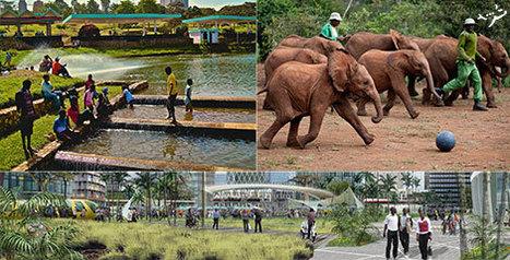 cheap flights to Nairobi | Travel | Scoop.it