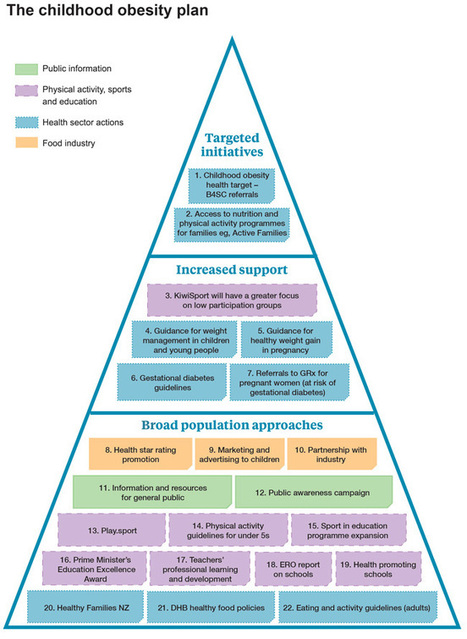 Childhood obesity plan | Ministry of Health NZ | Health NCEA Level 1 | Scoop.it