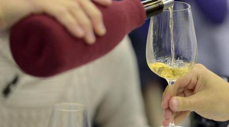 La France lance un site internet pour promouvoir l'oenotourisme | Le vin quotidien | Scoop.it