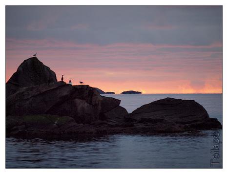 #Norvège : retour du #soleil le 15 janvier à Tromsø et Kirkenes | Hurtigruten Arctique Antarctique | Scoop.it