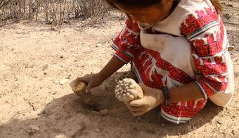 Huicholes: The Last Peyote Guardians | The Lophophora Blog | Scoop.it