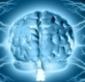 Les JEUX VIDÉO entraînent le mimétisme des cerveaux   Psycho, brain, neurosciences   Scoop.it
