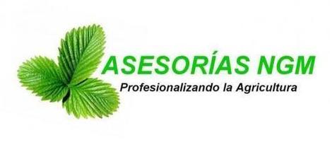 Asesorías Agrícolas, capacitación y proyectos de desarrollo sustentable.   strawberry   Scoop.it