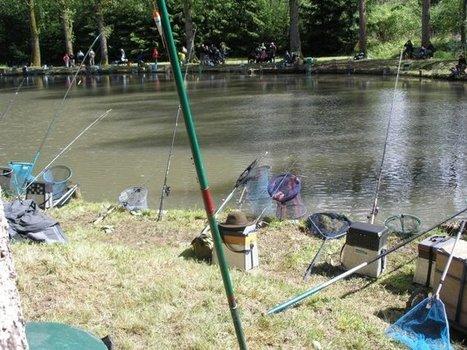ROMS : Violente bagarre au cours d'une partie de pêche ! | Chronique d'un pays où il ne se passe rien... ou presque ! | Scoop.it