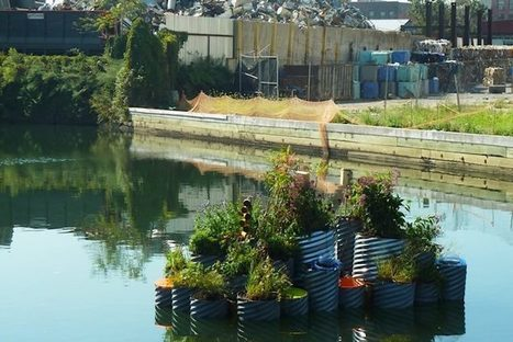 Floating Garden Cleans As It Grows In The Most Polluted Waterway in US | compost for food production from food scraps | Scoop.it