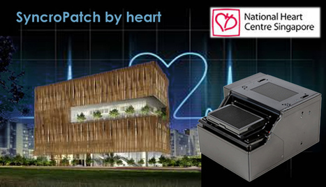 SyncroPatch for Cardiac Researchers  at Nat. Heart Centre Singapore | Patch Clamp went HTS | Scoop.it