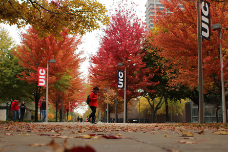 Campus falls into November with Tree Planting | Tree Campus USA | Scoop.it