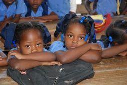 Luchar contra el trabajo infantil doméstico en Haití es apremiante - Canal Solidario   Trabajo social con grupos sociales   Scoop.it