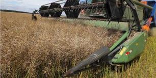Algérie - La sécurité alimentaire est-elle subordonnée à la maîtrise d'une agriculture high-tech ? | Chimie verte et agroécologie | Scoop.it