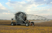 La agricultura urbana como economía en red   AGROSTART   Mundo agropecuario   Scoop.it