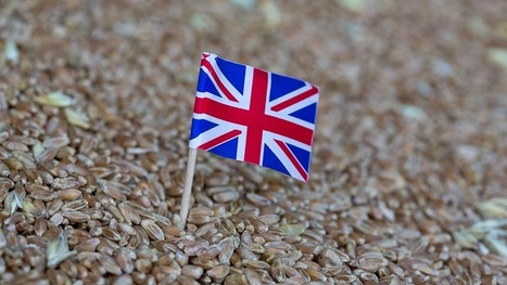 21 questions Defra must answer on Brexit - Farmers Weekly | Agrarforschung | Scoop.it