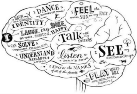 PERSPECTIVE: The Neuroscience At The Heart Of Learning and Leading | Start Empathy | Scoop.it