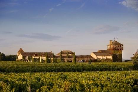 Bordeaux 2013: less negativity but worries persist | Autour du vin | Scoop.it