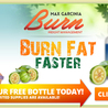 Melt Away Fat and Look Great