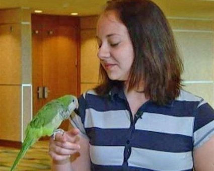 10 life-saving animals: Willie the parrot | Animals Make Life Better | Scoop.it