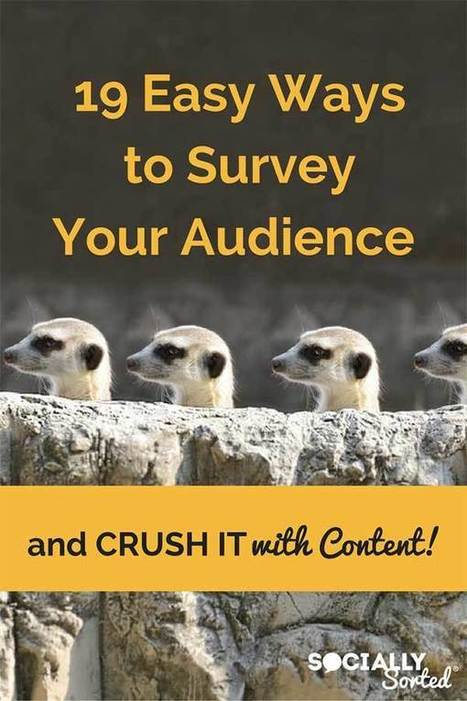 19 Easy Ways to Survey Your Potential Customers  | Research Capacity-Building in Africa | Scoop.it