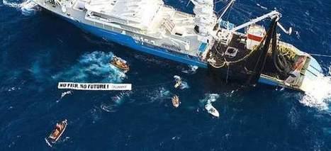 Acuerdo sobre la reforma de la política pesquera comunitaria | Planeta Tierra | Scoop.it