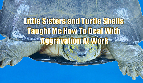 Little Sisters and Turtle Shells Taught Me to How to Deal With Aggravation at Work | OnMarketing: topics for professional service marketers | Scoop.it