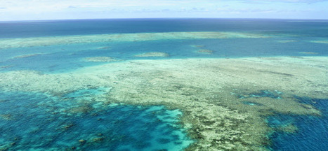 #Australia gives green light to new $15bn #coalmine despite #BarrierReef qualms :( #UNESCO ~ #SaveTheReef | Rescue our Ocean's & it's species from Man's Pollution! | Scoop.it