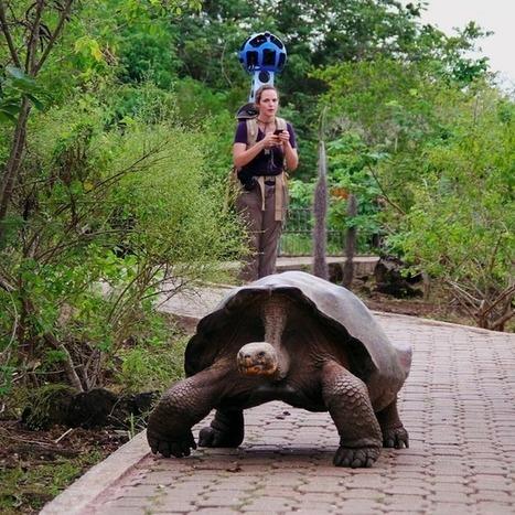 Travel Through the Galápagos Islands via Google Street View   Google   Scoop.it