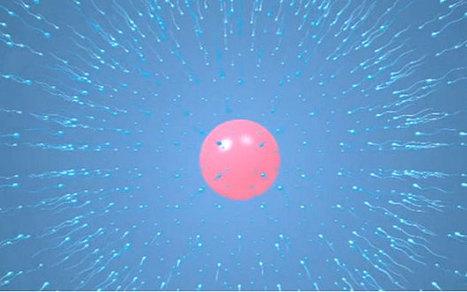 Video: Reprogrammed stem cells grown inside living mice - Telegraph | BIOSCIENCE NEWS | Scoop.it