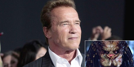 Schwarzenegger Admits To Affair With Predator Costume | Celebrities and Family Law Issues | Scoop.it