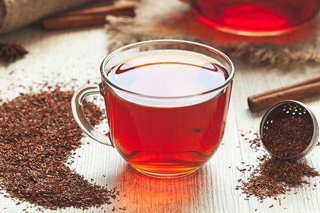 Organic Honeybush Tea - One of the best healthy beverage.   Green Tea   Scoop.it
