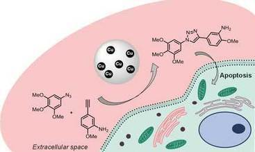 Implantable nanoparticle catalyst against cancer | Nanoparticules & Poudres fines | Scoop.it