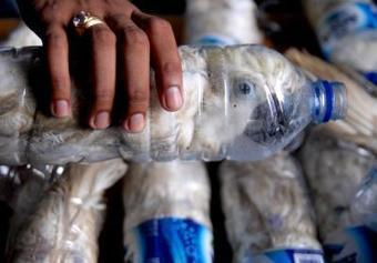 Smuggled animals | Reuters.com | All about water, the oceans, environmental issues | Scoop.it