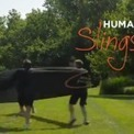 Le Human Slingshot Game, génial ou dangereux ? | Aw3some Pr0ducts | Scoop.it