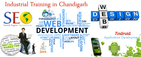 SEO Training in Chandigarh | Industrial Training in Chandigarh | Scoop.it