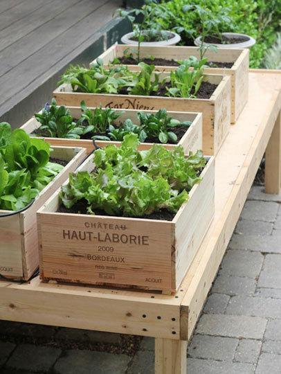 Small Space DIY Idea:   An Urban Garden in a Wine Box   Life on the Balcony   Garden Designer   Scoop.it