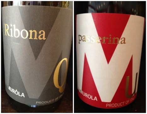 Le Marche Wines and How to Buy Wine as a Shop Owner and as a Customer | Wines and People | Scoop.it