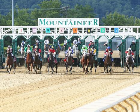 Mountaineer's 2016 Profits Drop Below Half Of 2014 Levels - Horse Racing News | Paulick Report | Racing Business | Scoop.it