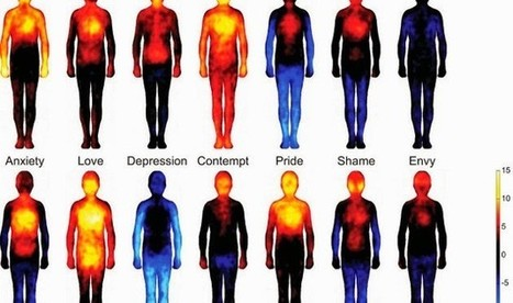 Wishing you HAPPINESS! Human Emotion Mapping. | weird. but I like it. | Scoop.it