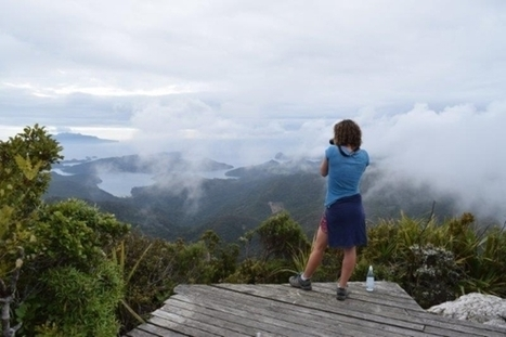 Aotea Track on Great Barrier Island reopens | Gt Barrier Island and Tongariro National Park | Scoop.it