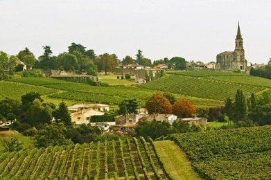 Le droit à planter restera réglementé | Agriculture en Dordogne | Scoop.it
